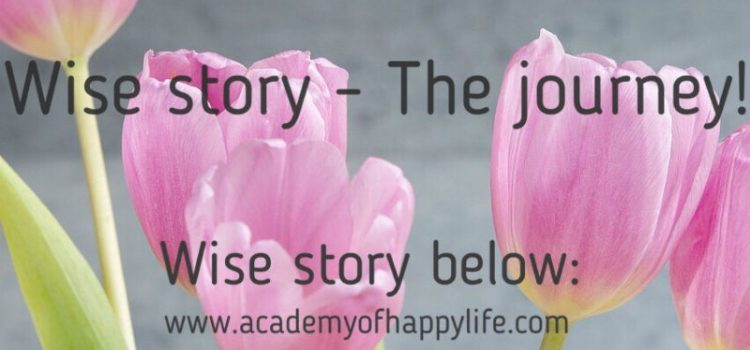 Wise story – The journey!