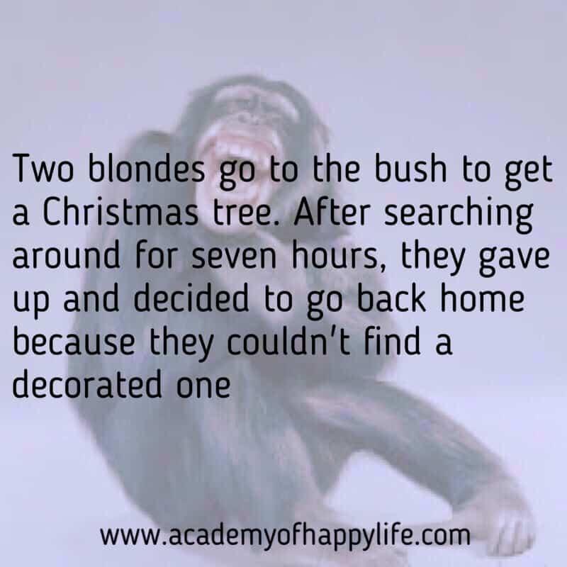 Christmas Joke!